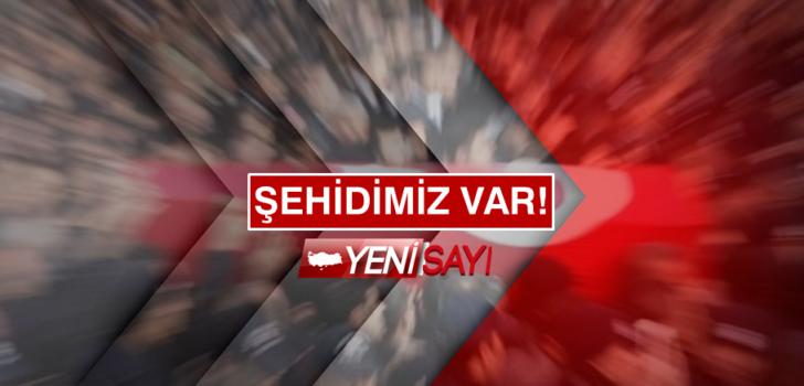 Barış Pınarı Harekatında 3 şehit !