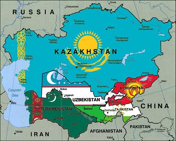 Avrupa Birliği ve Orta Asya Dışişleri Bakan Yardımcıları online görüşmesi