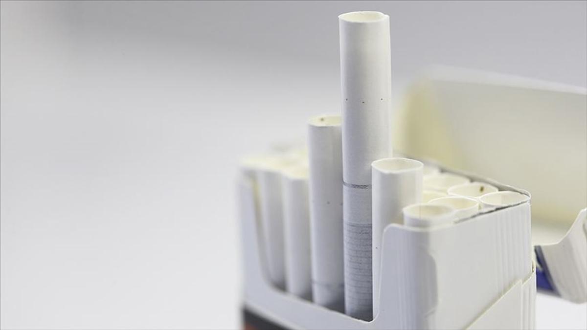 Tütün ürünleri kullanımı dünyada her yıl 8 milyon insanın ölümüne yol açıyor