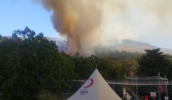 Heybeliada'da orman yangını !